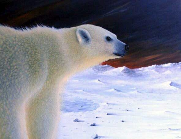 Polar Dawn by artist Diarmid Doody