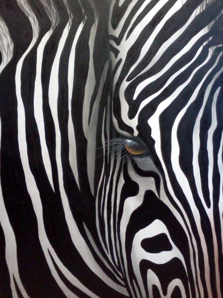 Stripes by artist Diarmid Doody