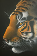 painting of tiger by artist Diarmid Doody